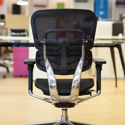 Ergohuman Black mesh chair back